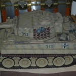 Lateral Tigre I 05