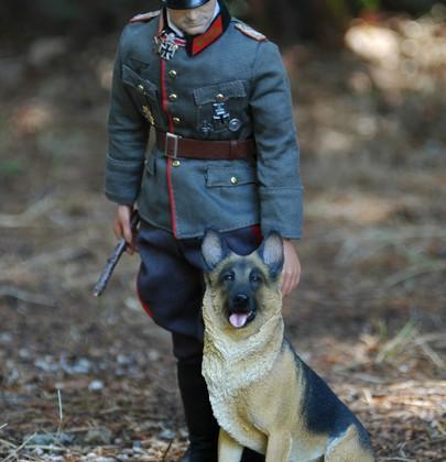 Rommel y pastor aleman